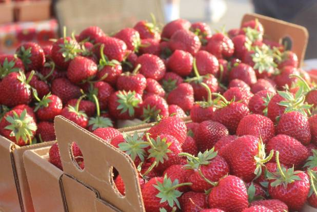 DesMoines_Farmers_Market_Fresh_Strawberries