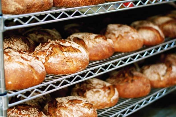 Terra_Bread