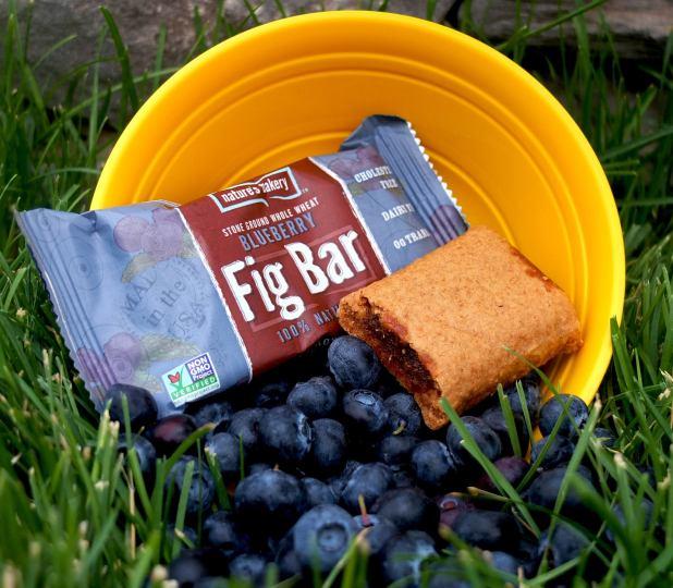 Fig_Bar_Blueberry