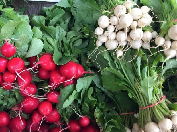 Vegetables_Ithaca_Farmer's_Market