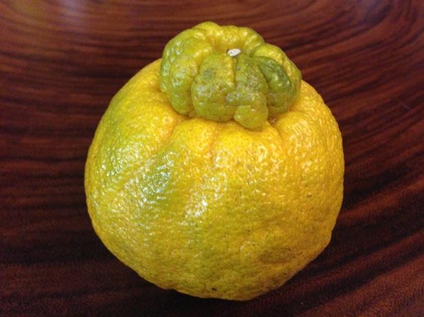 Shiranuhi_Tangerine