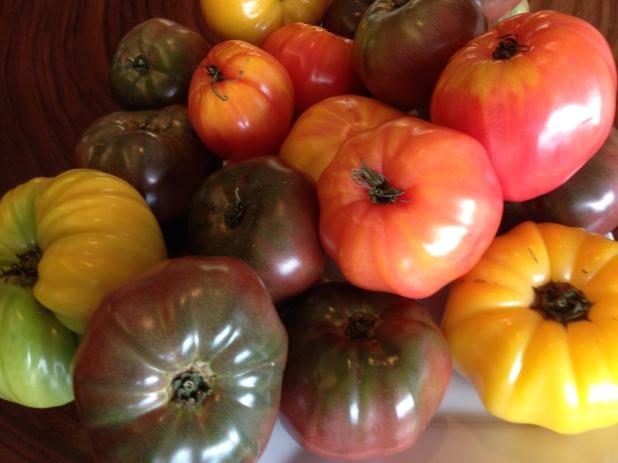 Farmhouse_Tomatoes