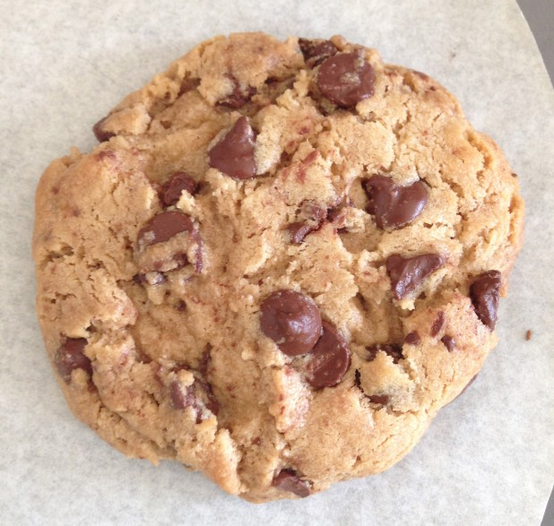 Just_Cookie_Dough_Chocolate_Chip