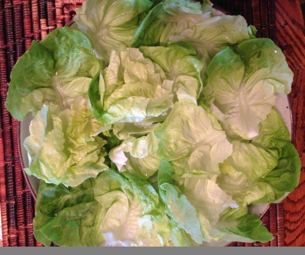 Butter_Lettuce_Leaves