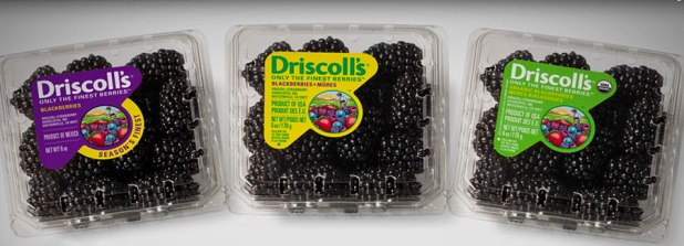 Driscolls_blackberries