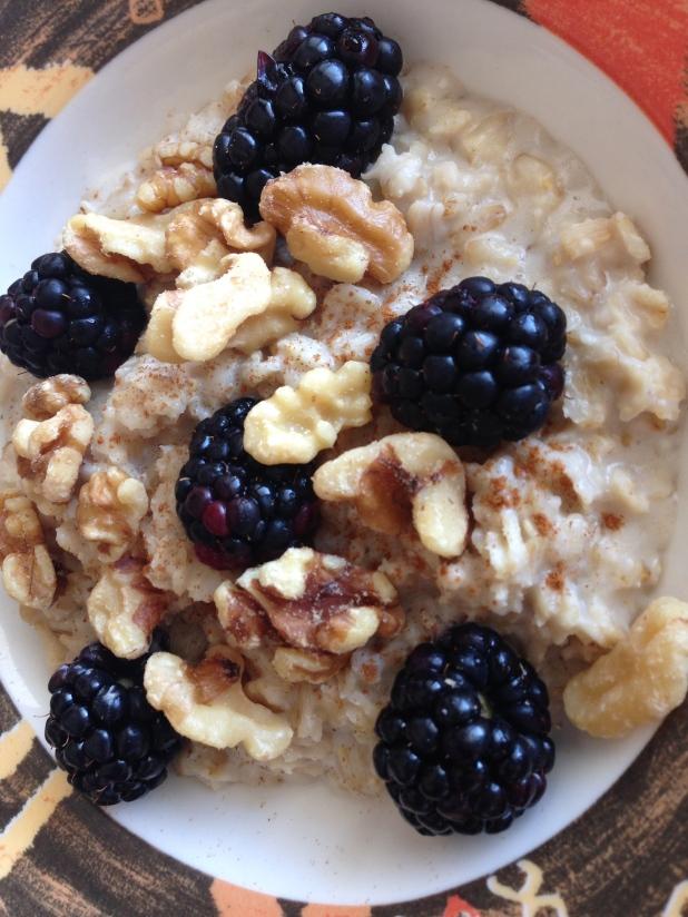 Milkadamia_Nut_Milk_Oatmeal