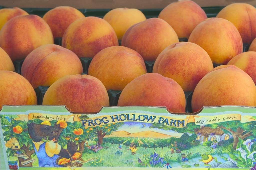 Mailorder Fruit: Where to Find the Best Fruit | Paddock Post